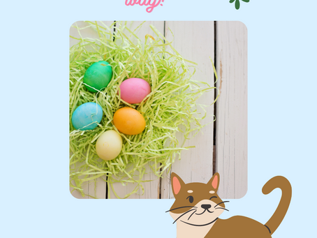 Happy Easter from Kitty Café!