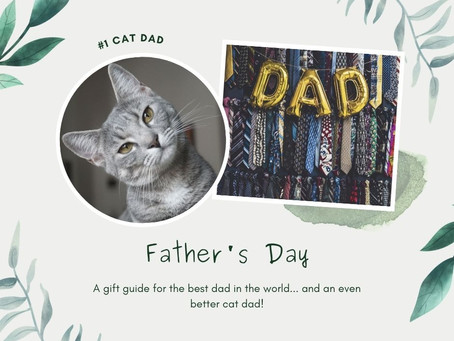 Father's Day: A gift guide for the best dad in the world... and an even better cat dad!
