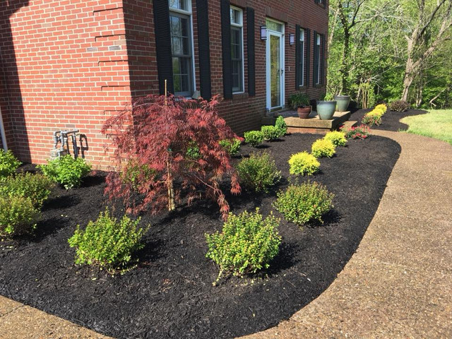 Foundation Plantings