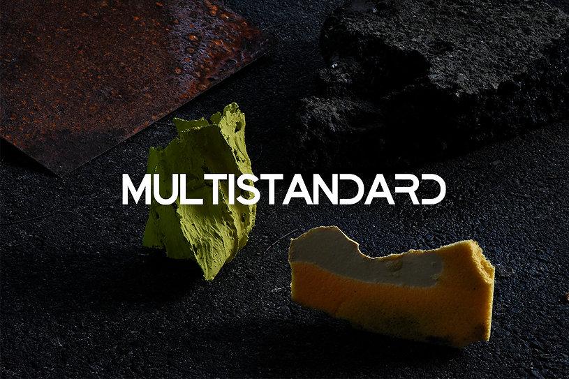 MULTISTANDARD_WEB_1.jpg