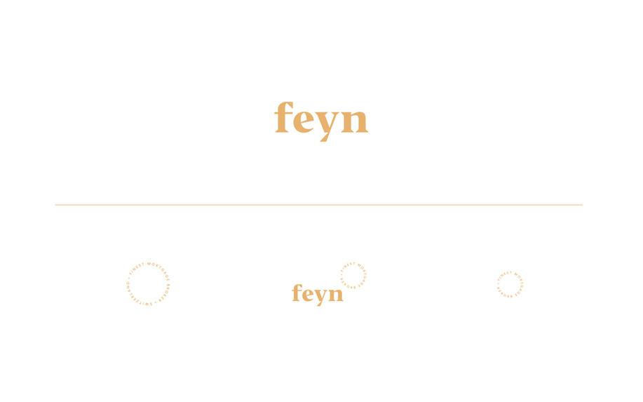 FEYN_logo.jpg