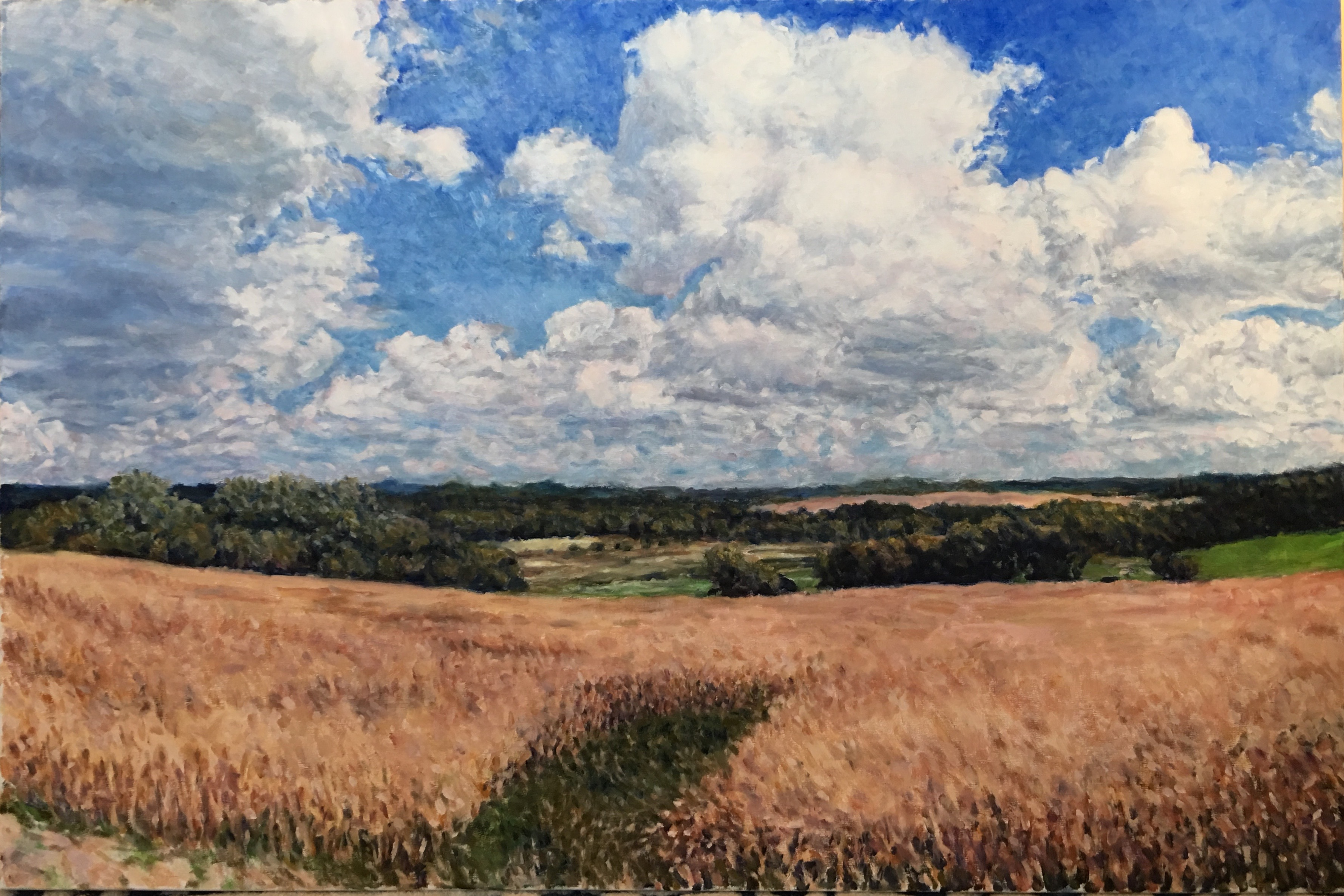 October Cornfield