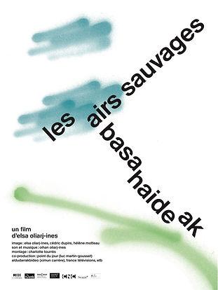 Affiche Les Airs Sauvages.jpg