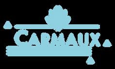logo-carmaux-vecto-bleu.png