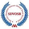 SDVOB CVE.jpg