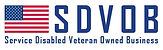 service-disabled-veteran-owned-business-
