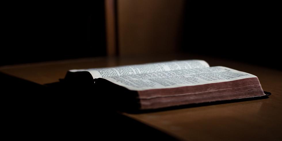 Bible Sunday