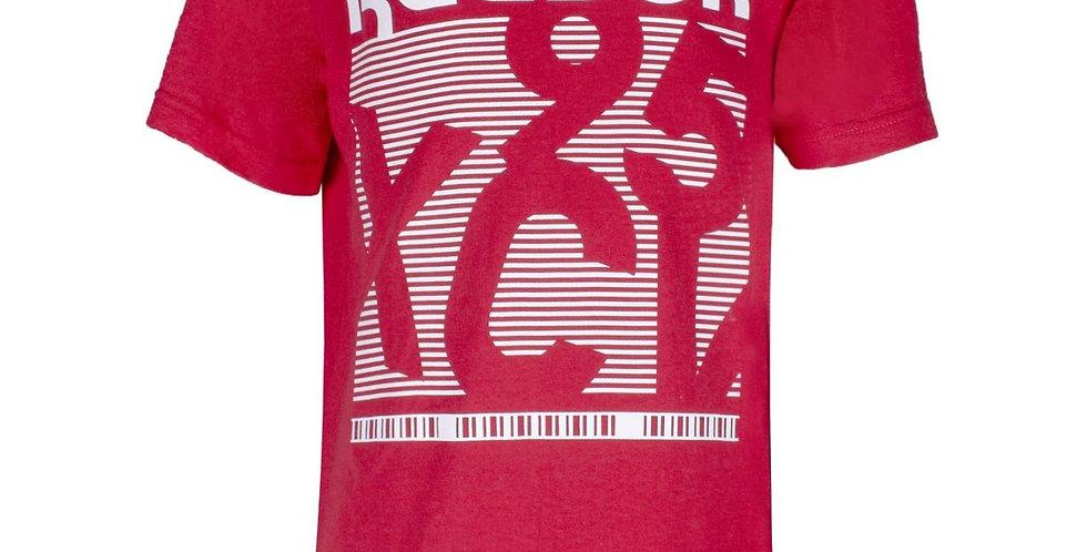 Camiseta Reebok Big The 95 Niño