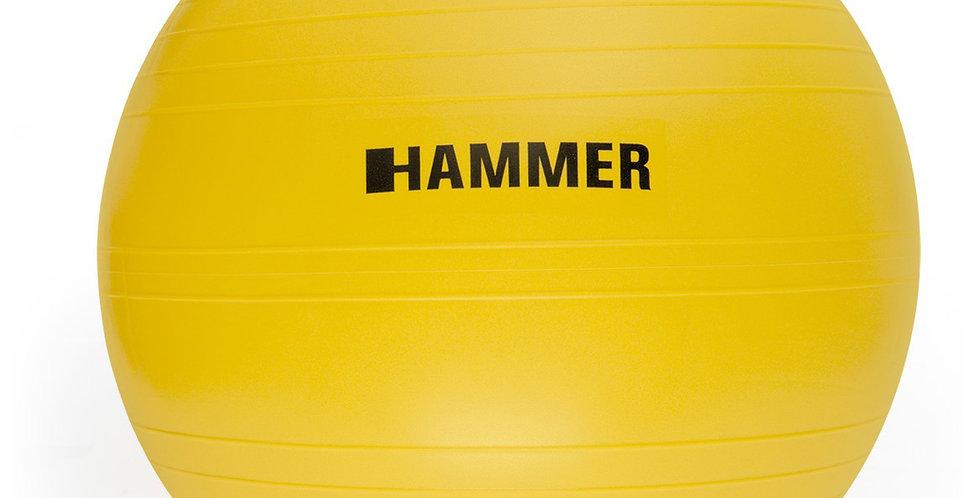 Fitball Hammer Gym 55Cm
