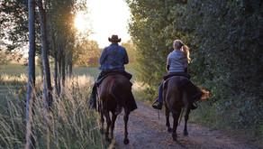 Welke soorten paardenwandelingen zijn er?