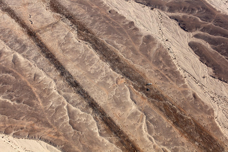 Fazal Sheikh, Desert Bloom 6, 2011