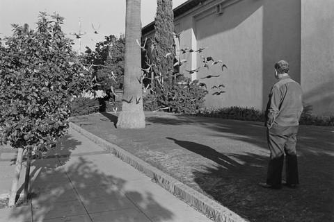 Henry Wessel, Santa Barbara, 1977