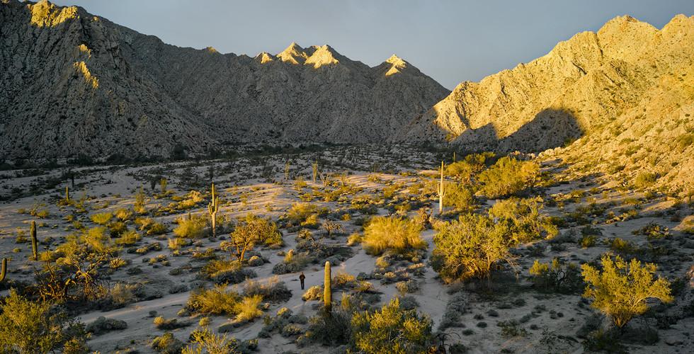 Mark Klett, Sunrise near Raven Butte, Gila Mountains, 2014