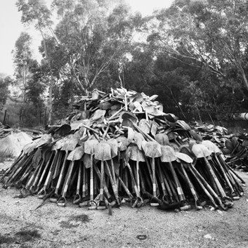 David Goldblatt, 'Lashing' shovels retrieved from underground, Central Salvage Yard, Randfontein Estates, Randfontein. , 1966