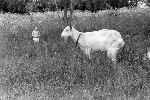 Emmet Gowin, Nancy, Danville, Virginia, 1963