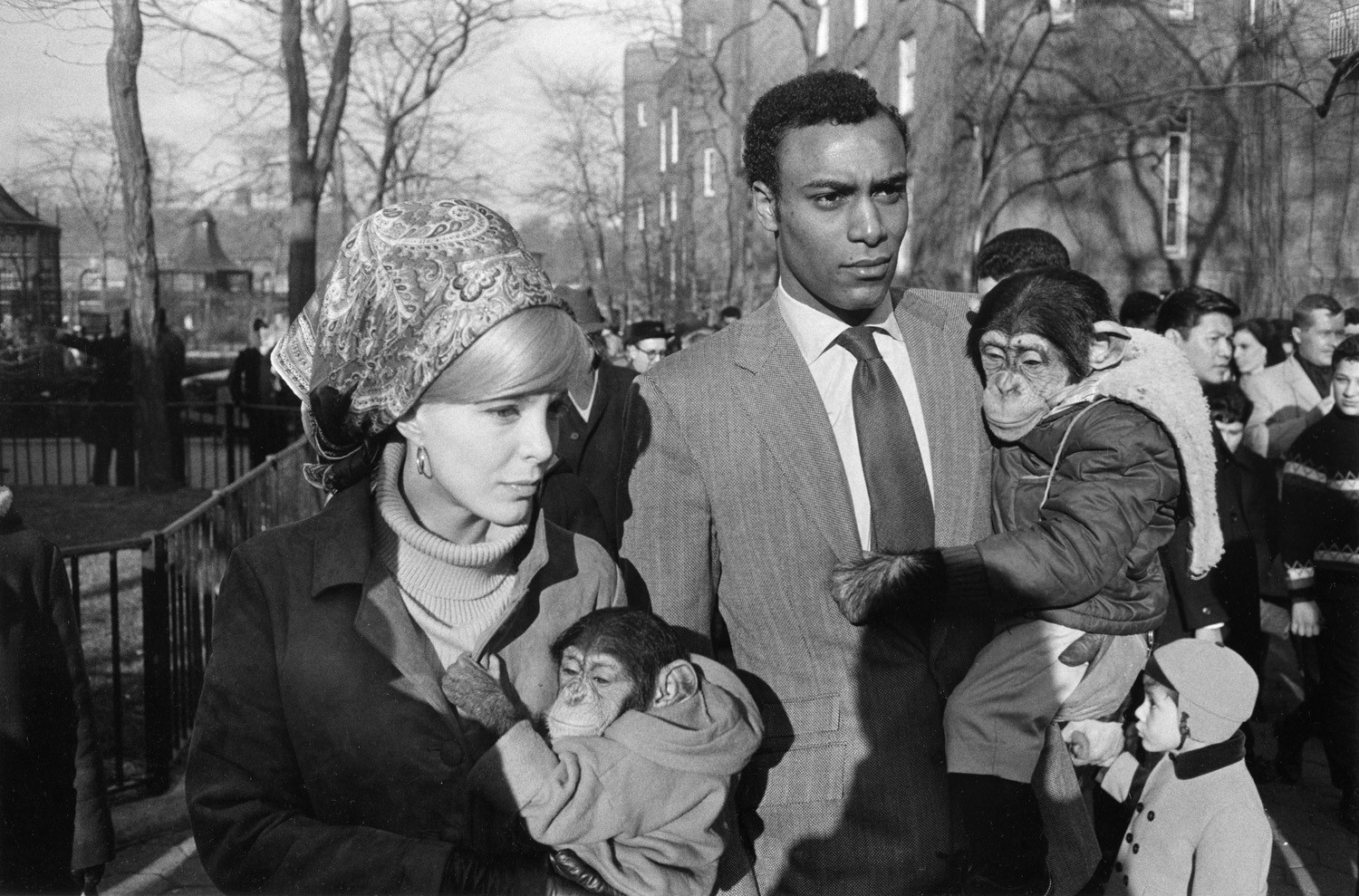 Garry Winogrand, Central Park Zoo, New York City, New York, 1967