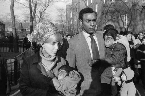 Garry Winogrand, Central Park Zoo, New York City, New York, 1967