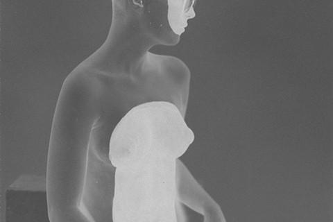 Tono Stano, White Shadow 3, 2011