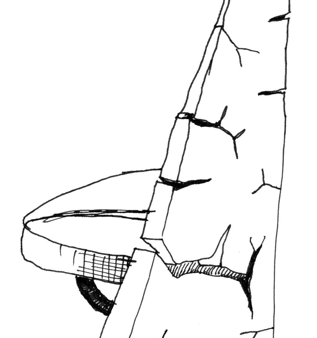David Byrne, Ancient Modernism, 2004
