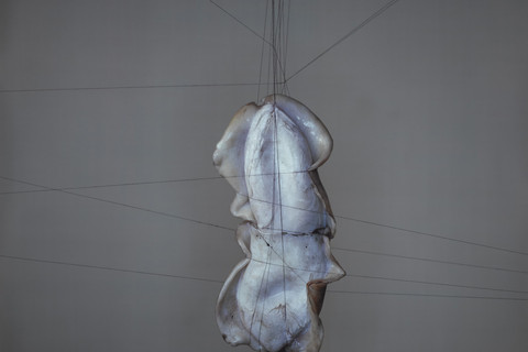 Richard Learoyd, Fish Heart, 2008