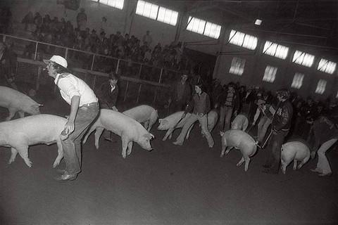 Garry Winogrand, Fort Worth, Texas, c. 1974