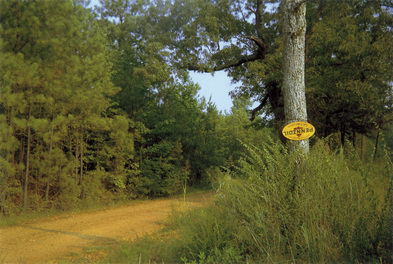 William Christenberry, Landscape, near Tuscaloosa, Alabama, 1990