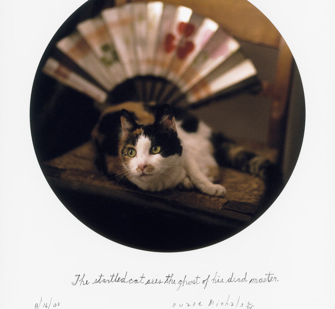 Duane Michals, The startled cat sees the ghost of his dead master, 8/16/05