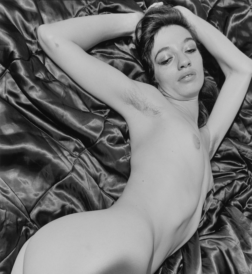 Lee Friedlander, Nude, 1982