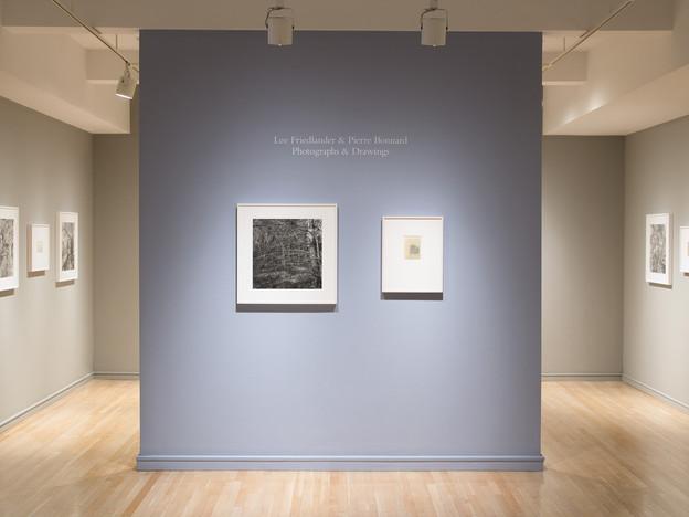 Lee Friedlander & Pierre Bonnard: Photographs & Drawings