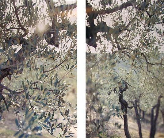 JoAnn Verburg, Something New Near Bazzano, 2000