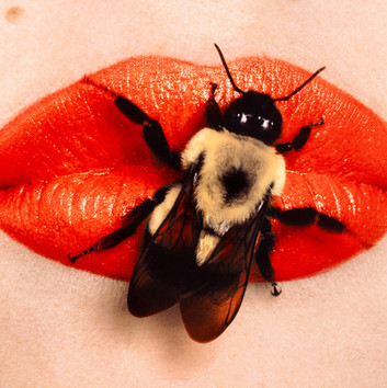 Irving Penn, Bee on Lips, New York, 1995