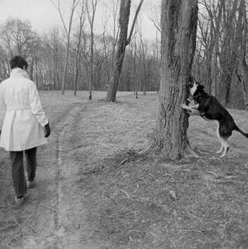 Henry Wessel, Heidi, New Jersey, 1976
