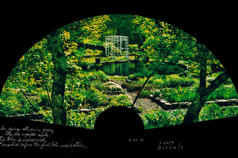 Duane Michals, In Spring all seems green, 5/25/07