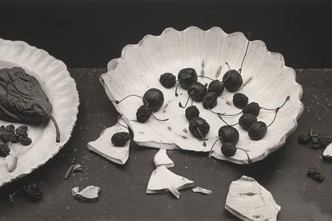 Irving Penn, Forgotten Fruit, New York, 1980