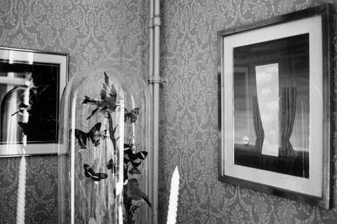 Duane Michals, Terrarium (Interior Magritte's Home), 1965