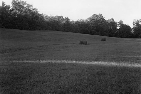 John Szarkowski, Meadow, Last Sun, 1997