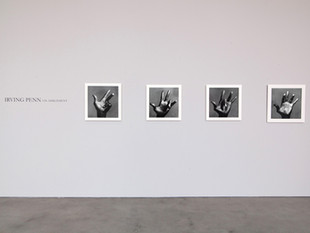 Irving Penn: On Assignment