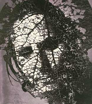 Emmet Gowin, Edith in Panama: Leaf Mask, 2004