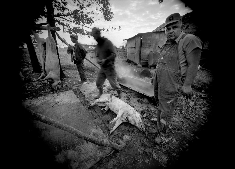 Emmet Gowin, Butchering, near Chatham, Virginia, 1970