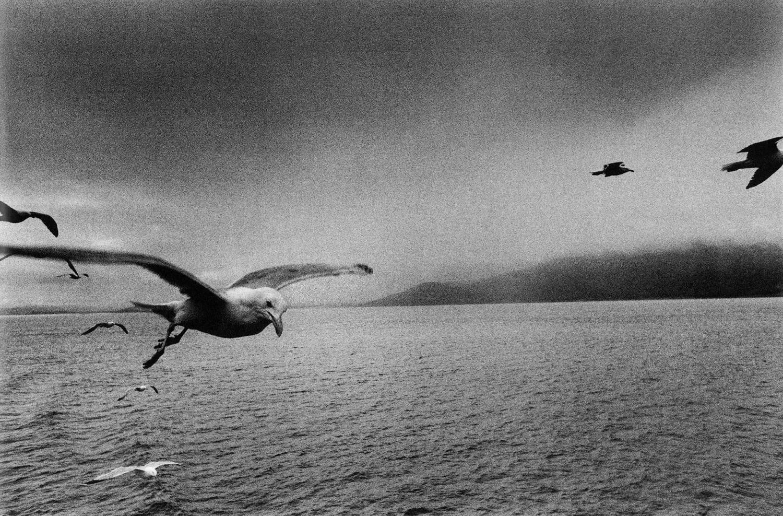 Josef Koudelka, Scotland, 1977