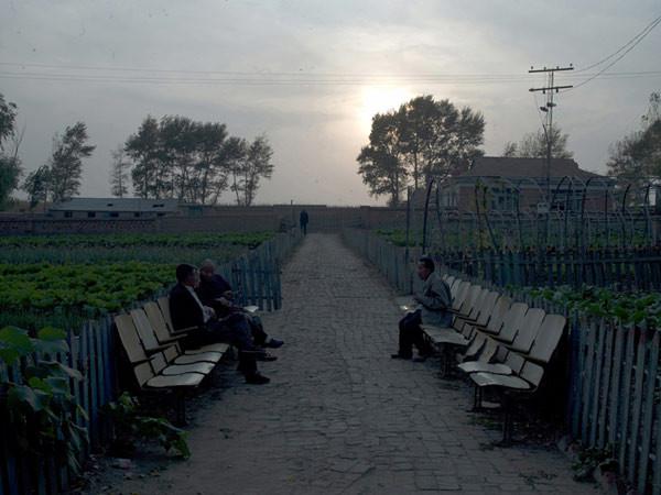 Hai Bo, Early Evening Light - 2, 2009