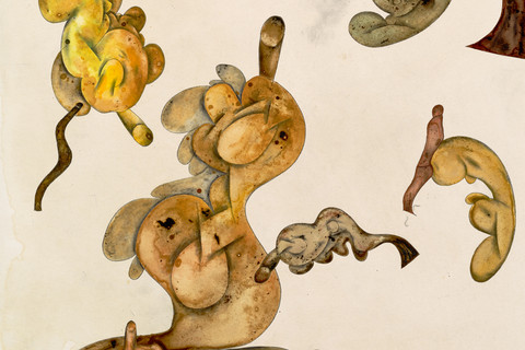 Irving Penn, A Gathering of Mermaids,