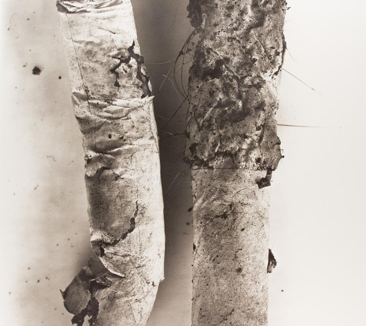 Irving Penn, Cigarette No. 17, New York, 1972