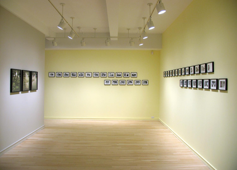 Installation View 3