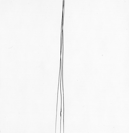 Harry Callahan, Telephone Wires, 1945-76