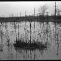 Harry Callahan, Detroit, 1941