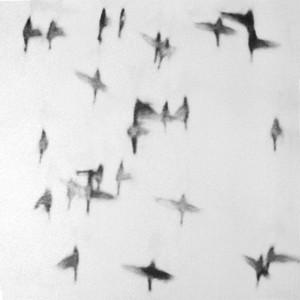 Michal Rovner, Twist, 1998
