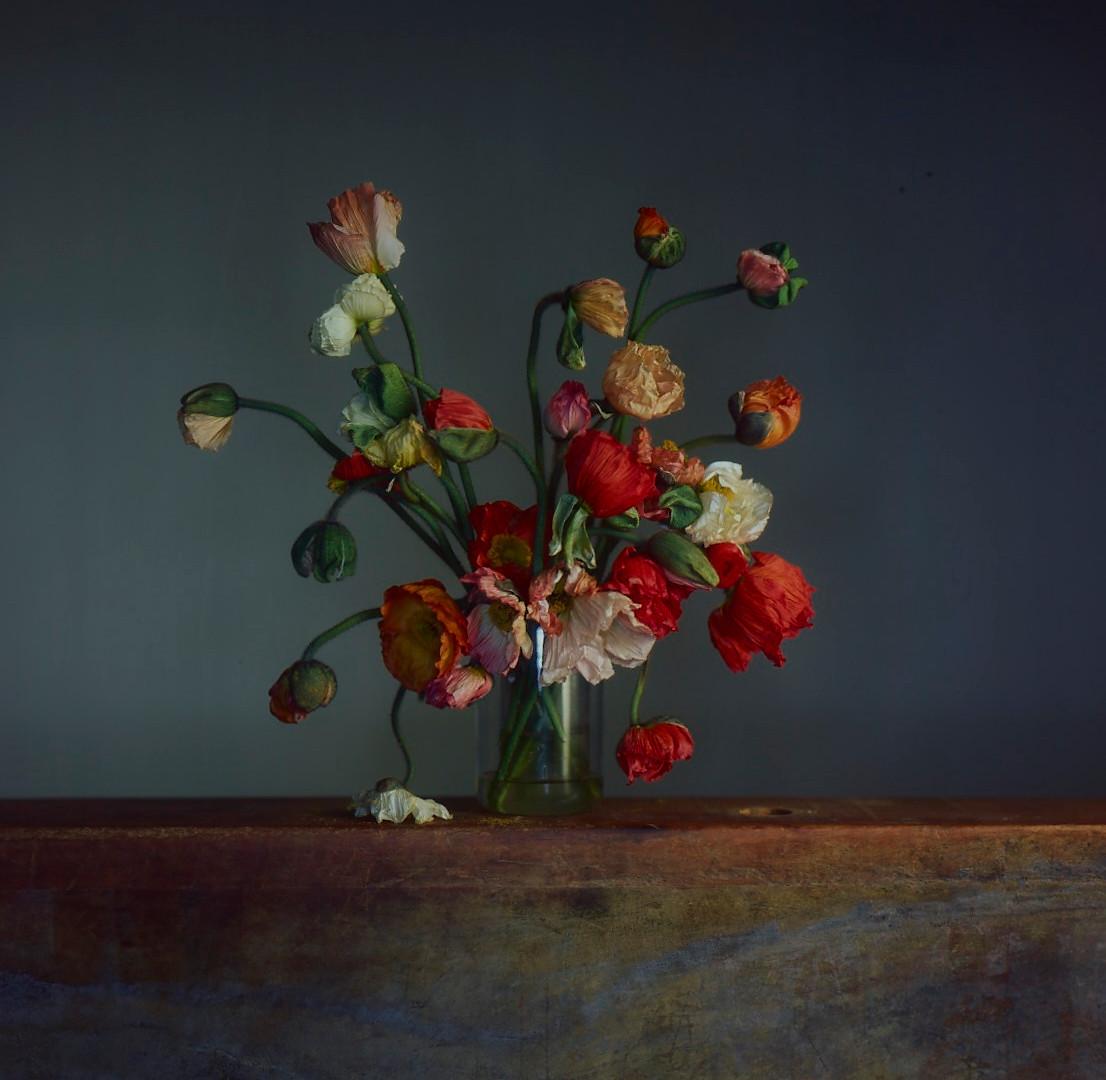 Richard Learoyd, Flowers, Day 1, 2019
