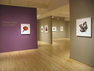Irving Penn: In Flower