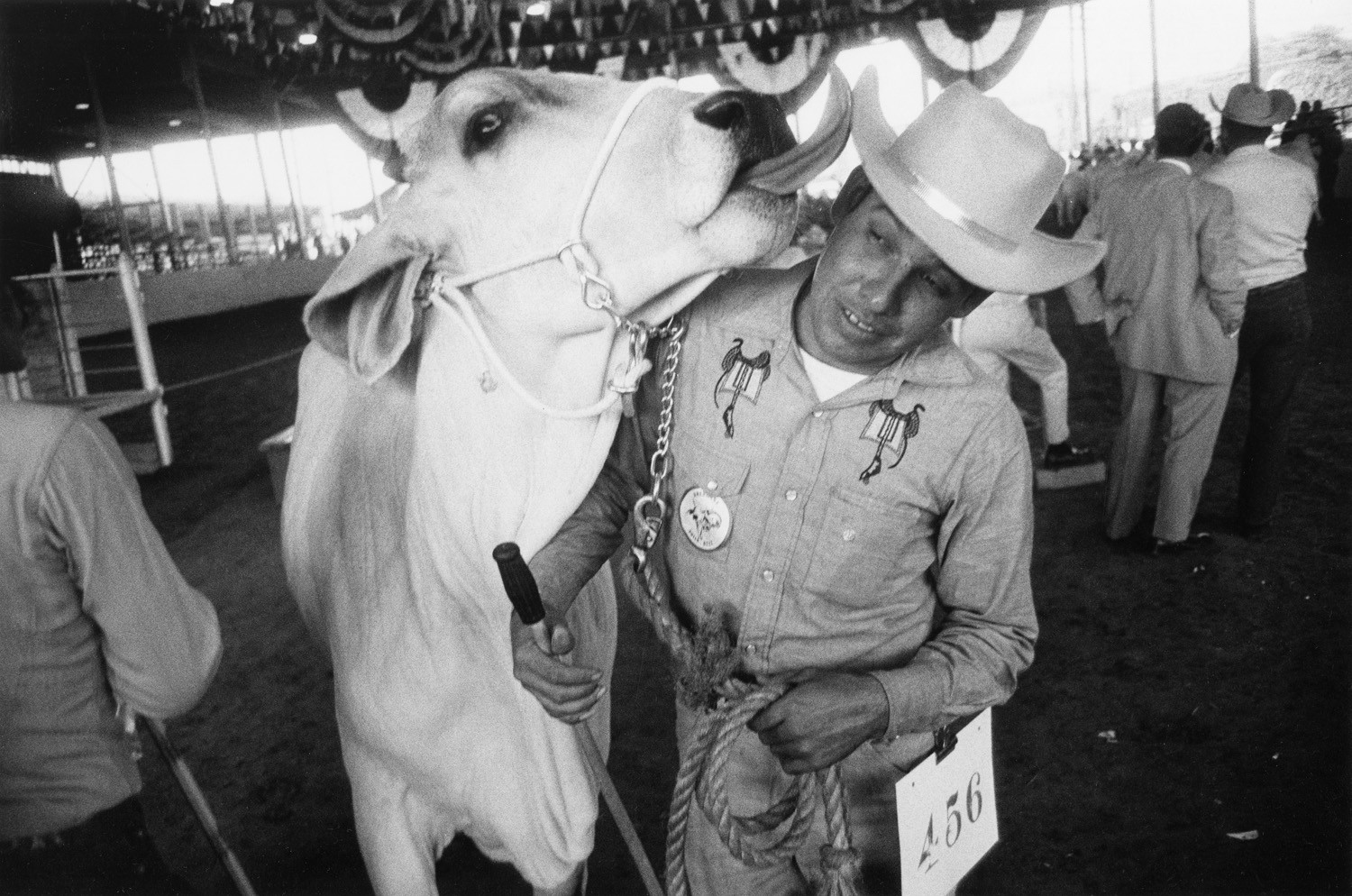 Garry Winogrand, Texas State Fair, Dallas, Texas, 1964